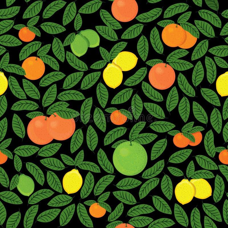 Teste padrão tirado mão do citrino ilustração stock