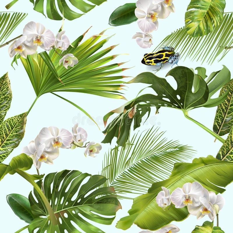 Teste padrão tropical da rã da orquídea ilustração stock