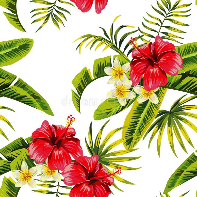 Teste padrão tropical das flores e das plantas ilustração do vetor