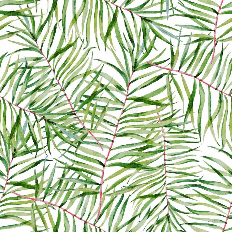 Teste padrão tropical das folhas da aquarela ilustração royalty free