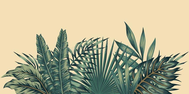 Teste padrão tropical das folhas da composição da selva ilustração royalty free