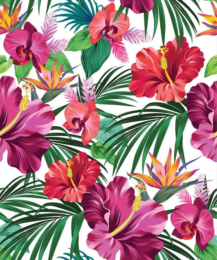 Teste padrão tropical do vetor ilustração stock