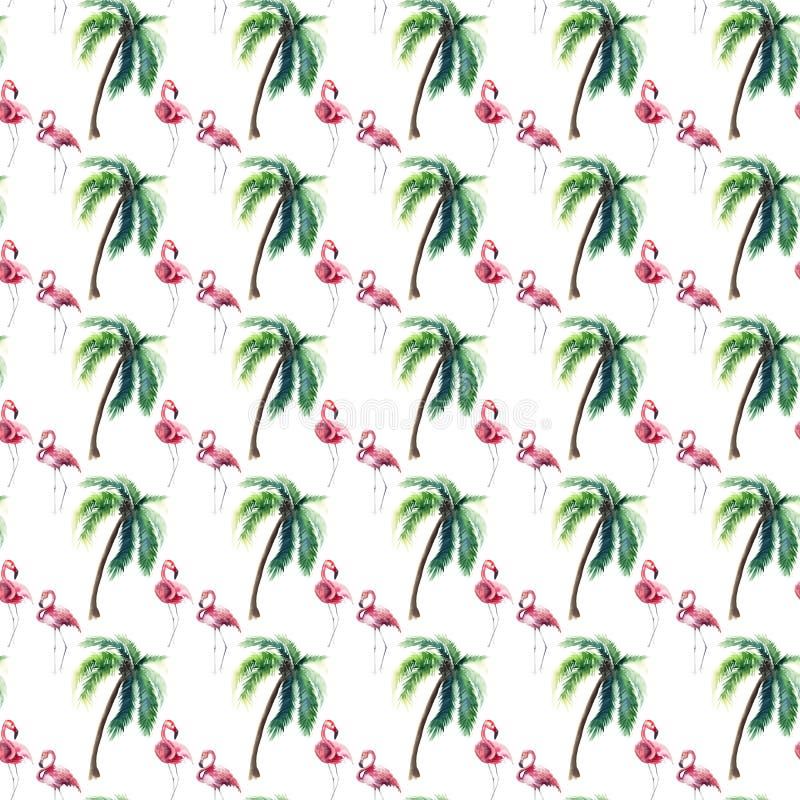 Teste padrão tropical maravilhoso sofisticado delicado macio bonito brilhante do verão de Havaí da palmeira verde e do watercolo  ilustração royalty free