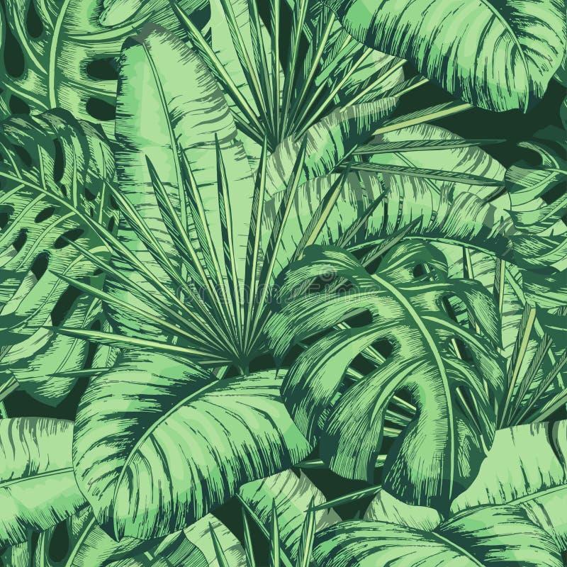 Teste padrão tropical sem emenda das folhas para a matéria têxtil da forma, linha preta ilustração do vetor da planta imagem de stock