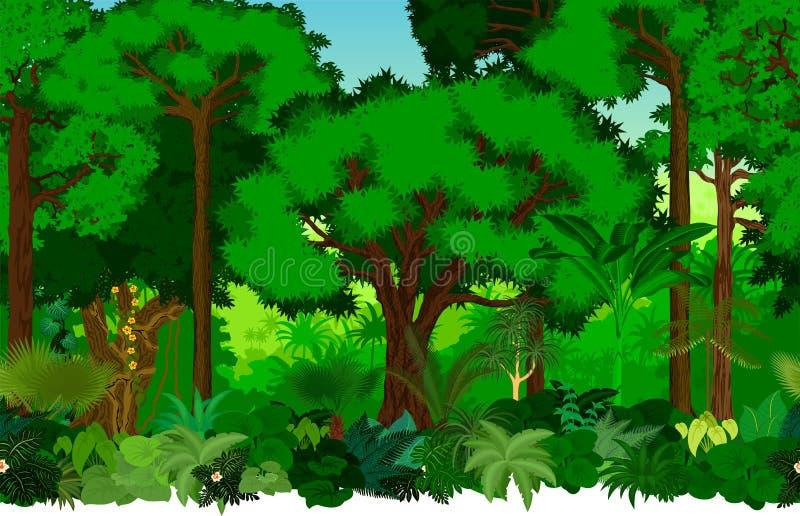 Teste padrão tropical sem emenda do fundo da selva da floresta úmida do vetor ilustração do vetor