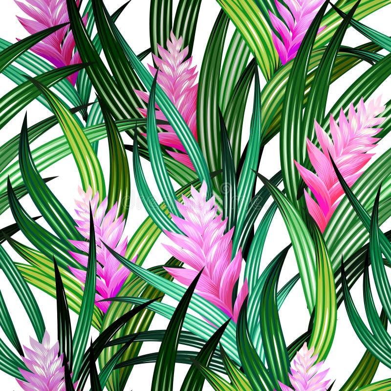 Teste padrão tropical sem emenda do vetor ilustração royalty free