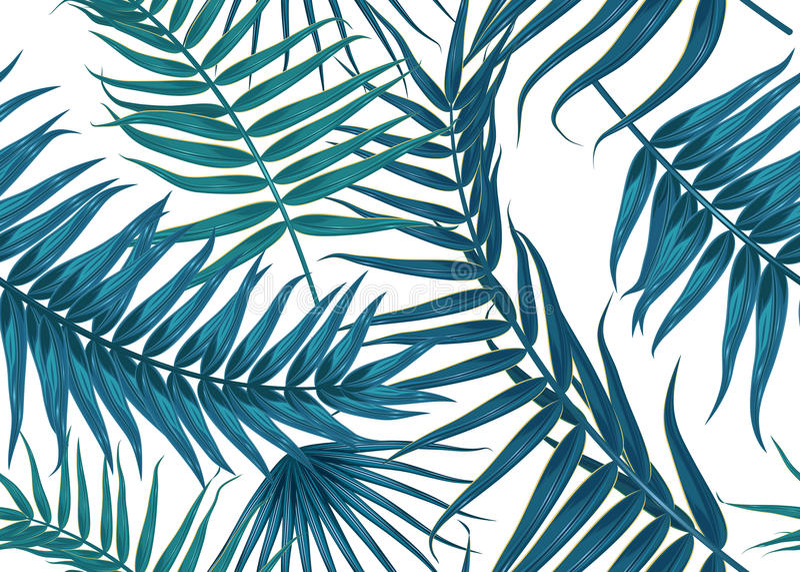 Teste padrão tropical sem emenda, fundo exótico com ramos de palmeira, folhas, folha, folhas de palmeira Textura infinita ilustração royalty free