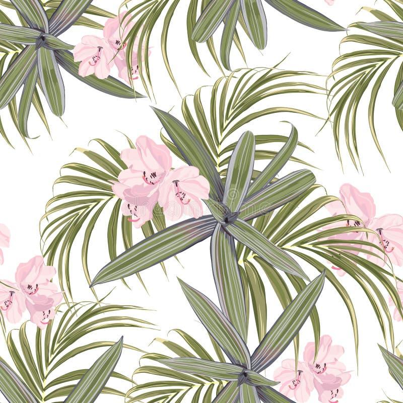 Teste padrão tropical verde-claro ilustração royalty free