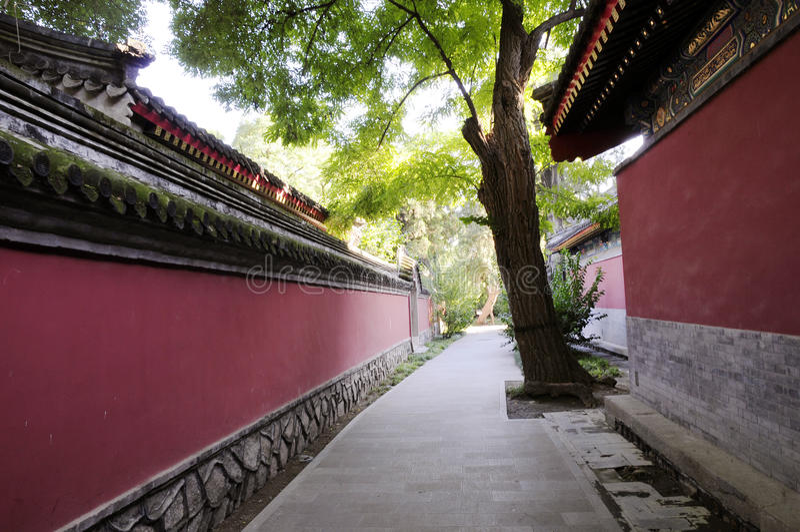 Teste padrão velho da parede no templo chinês fotografia de stock royalty free