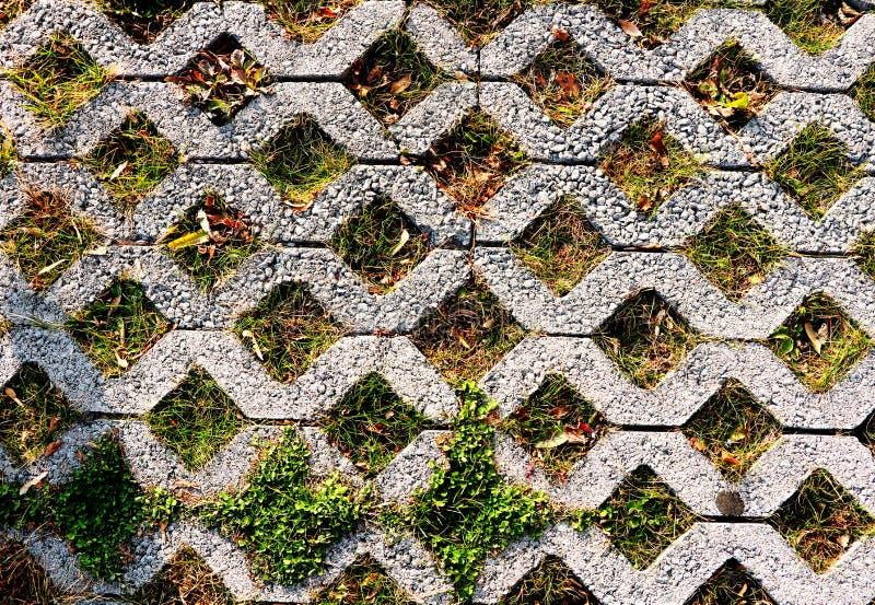 Teste padrão verde do estacionamento de telhas de assoalho quadradas do cimento com GR verde foto de stock