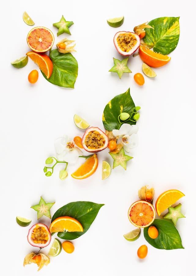 Teste padr?o colorido de frutos ex?ticos inteiros e cortados com folhas e as flores tropicais imagens de stock royalty free