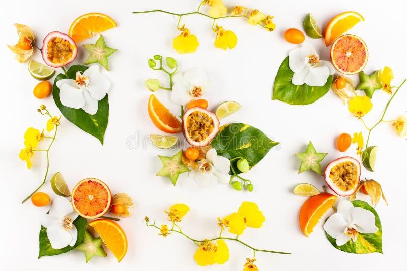 Teste padr?o colorido de frutos ex?ticos inteiros e cortados com folhas e as flores tropicais imagem de stock