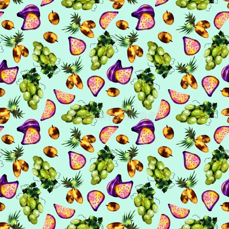 teste padr?o do fruto tropical ilustração do vetor
