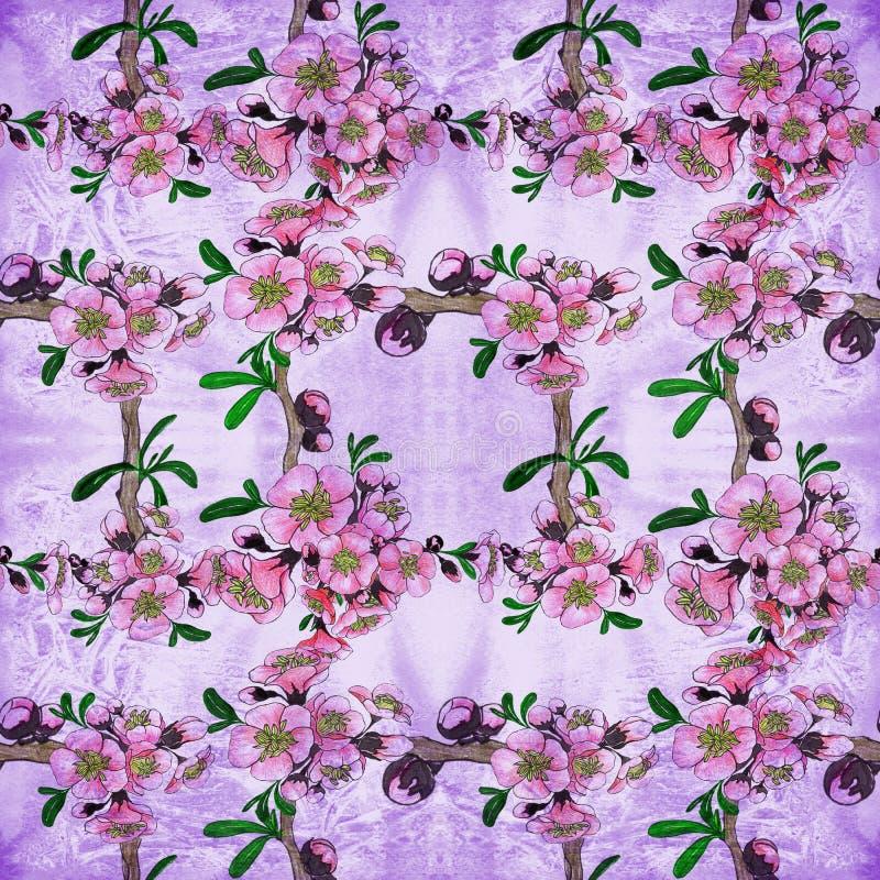 Teste padr?o sem emenda Apenas chovido sobre ?rvore de floresc?ncia Colagem das flores no fundo da aquarela ilustração stock