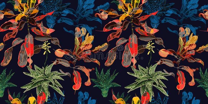 Teste padr?o sem emenda Cactos, plantas carnudas e ficus ilustração royalty free