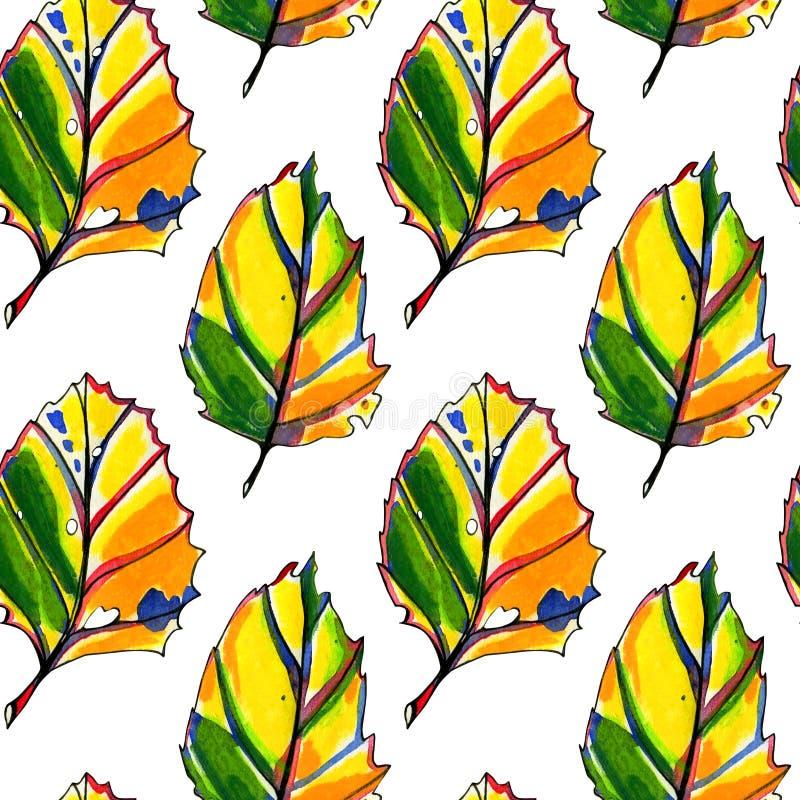 Teste padr?o sem emenda com as folhas de outono da aquarela ilustração stock