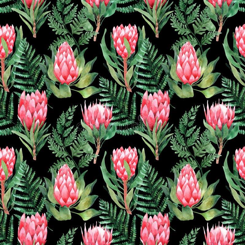 Teste padr?o sem emenda da aquarela com folhas e as flores tropicais greenery succulent Ilustra??o floral do projeto element Aper ilustração stock
