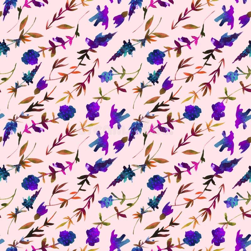 Teste padr?o sem emenda da aquarela floral Teste padrão pintado à mão com tomilho dos wildflowers imagem de stock