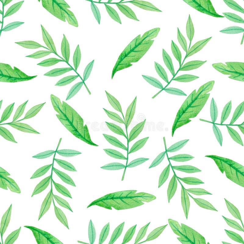 Teste padr?o sem emenda da aquarela verde com folhas ilustração stock