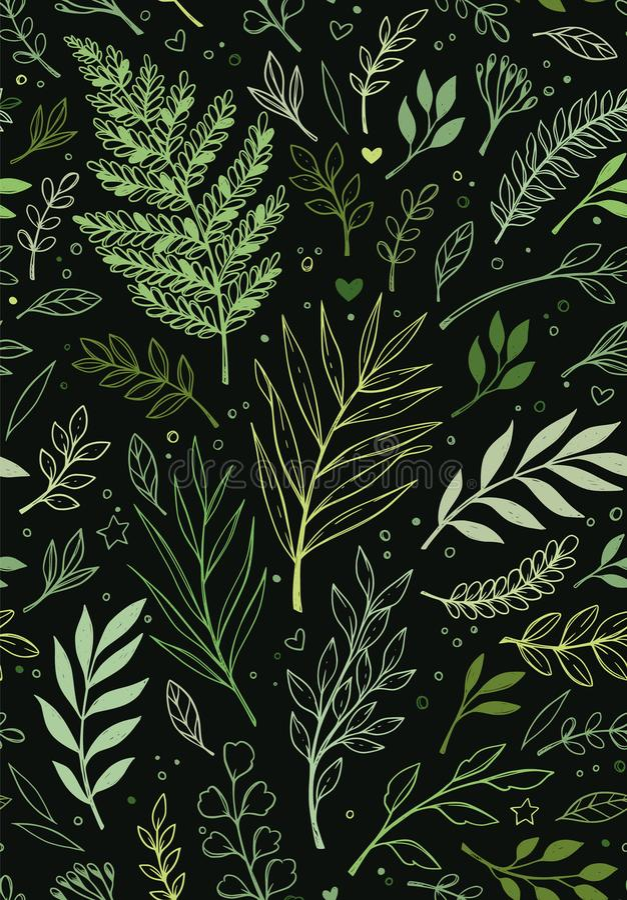 Teste padr?o sem emenda da mola Fundo bot?nico com eucalipto, ramos, samambaia e folhas Fundo floral do projeto?, contexto, proje ilustração royalty free