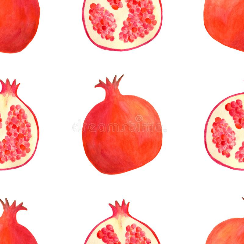 Teste padr?o sem emenda da rom? da aquarela Fundo vermelho tirado mão da ilustração do fruto isolado no branco para o projeto de  ilustração stock