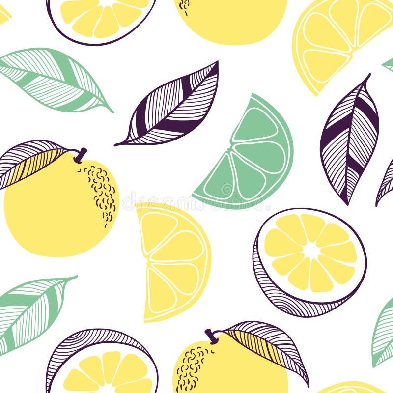 Teste padr?o sem emenda do citrino Fruto, folha, fatia, flor da laranja, cal, limão Ilustração tirada mão do vetor ajustada em na imagens de stock