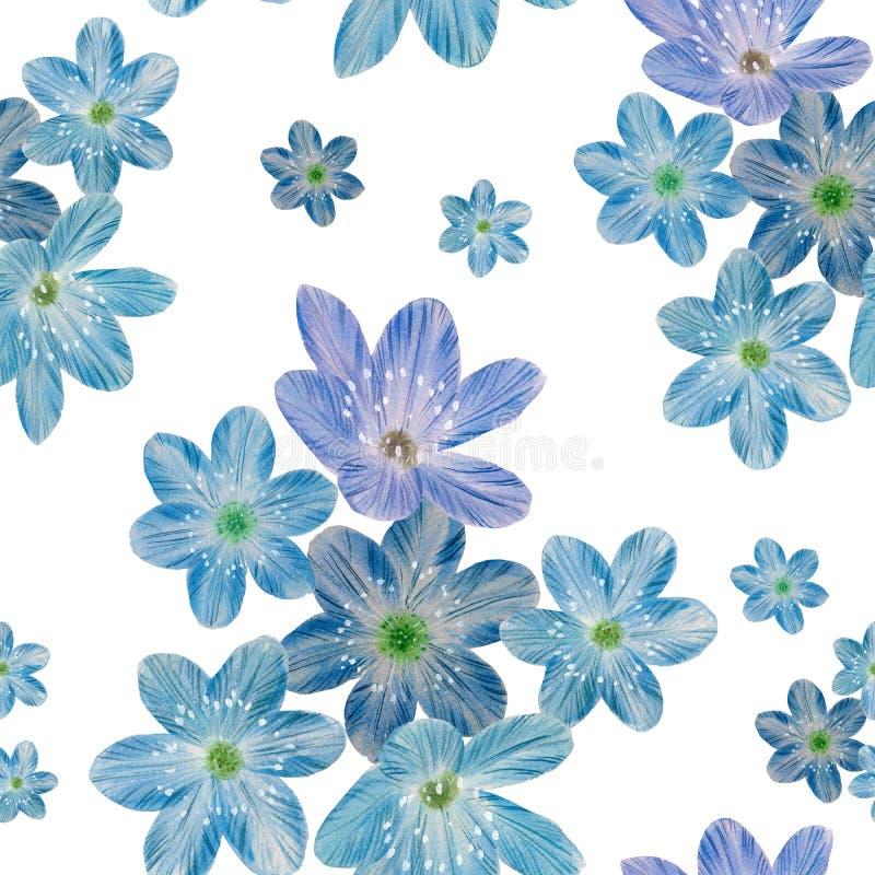 Teste padr?o sem emenda floral em um fundo branco ilustração do vetor
