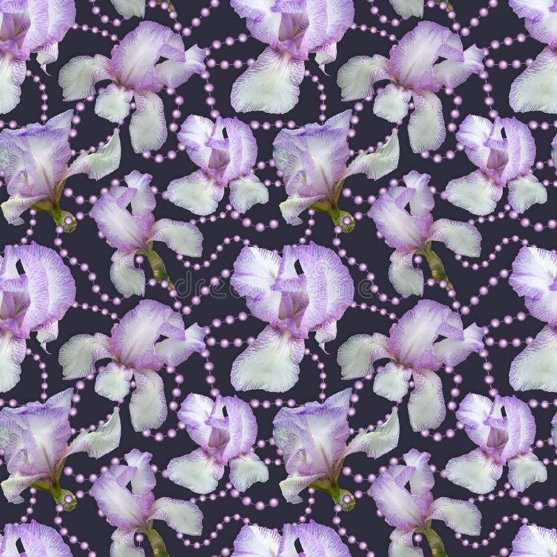 Teste padr?o sem emenda Flores delicadas das íris em um forro roxo com grânulos da pérola imagens de stock royalty free
