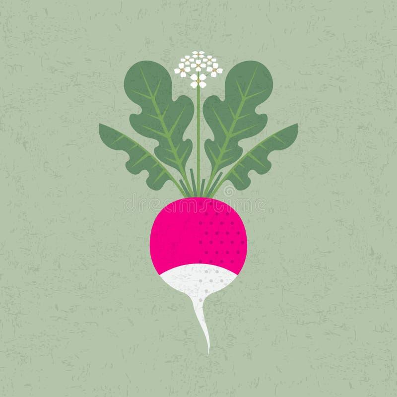 Teste padr?o sem emenda Rabanete, folhas e flores cor-de-rosa no fundo gasto imagem de stock royalty free