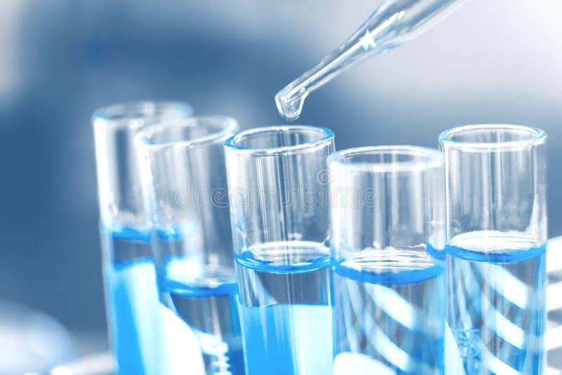 Teste químico do laboratório de vidro na sala do regaço Conceito da ciência imagens de stock