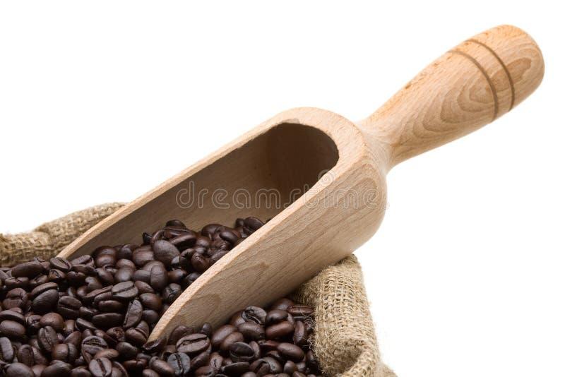 Testende koffiebonen stock foto's
