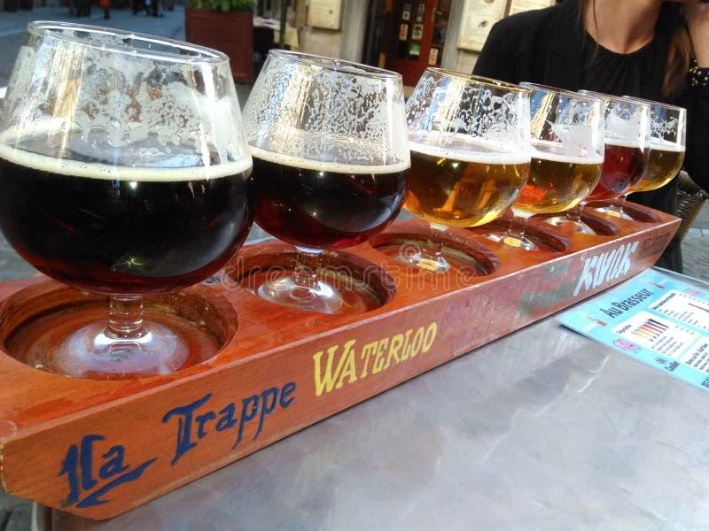 Testes da cerveja foto de stock