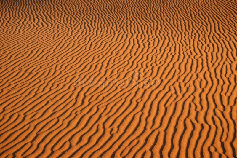 Testes padrões do deserto fotos de stock royalty free