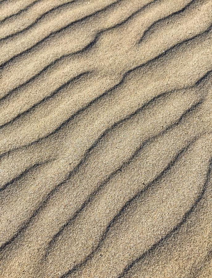 Testes padrões na areia fotografia de stock royalty free