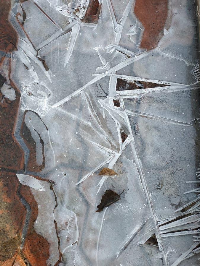 Testes padr?es do gelo em uma po?a congelada imagem de stock royalty free