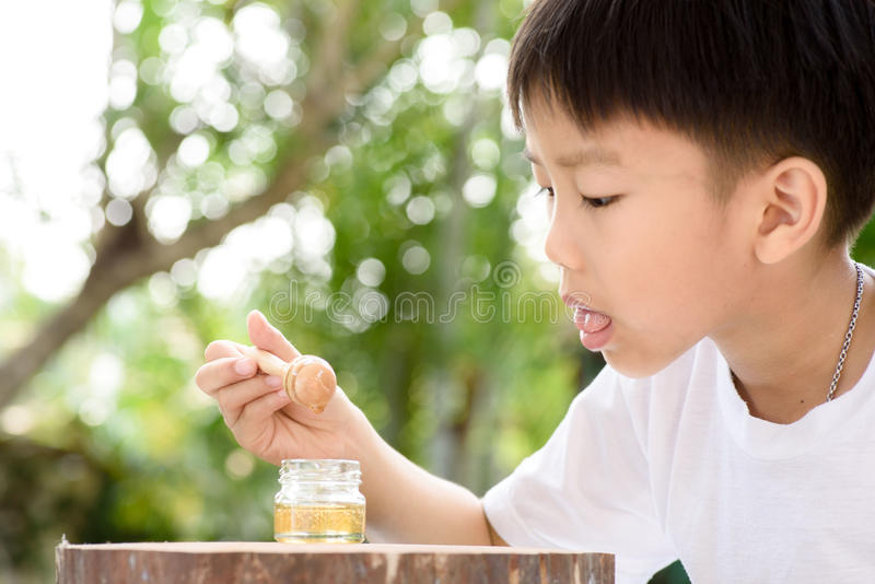 Testing honey. Young Thai boy try to test honey from honey comb in the garden stock photo