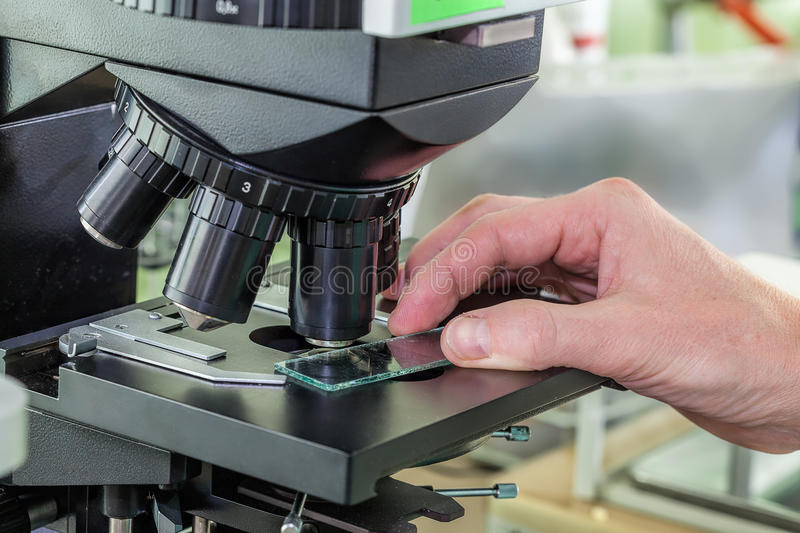Testing specimen with the microscope. Ocular in lab royalty free stock photo