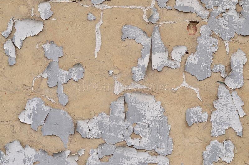 Testo beige obsoleto stagionato e macchiato del primo piano del muro di cemento fotografie stock libere da diritti