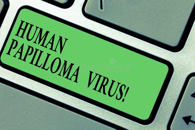 Testo della scrittura che scrive il virus del papilloma di Huanalysis Concetto che significa sessualmente - malattia trasmessa di fotografia stock