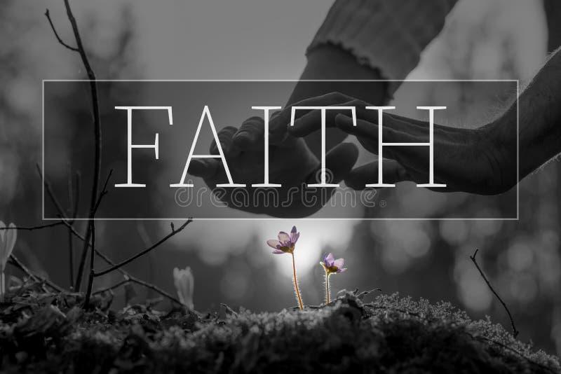 Testo di fede sopra le mani che consolidano un fiore fotografie stock libere da diritti