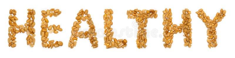Testo sano, arachidi illustrazione vettoriale