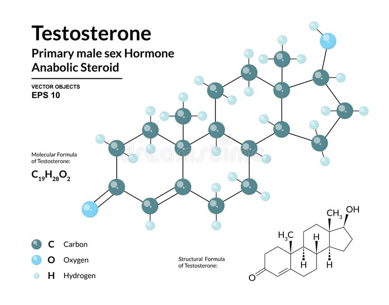 Testosterone. Primary Male Sex Hormone. Structural Chemical Molecular Formula and 3d Model vector illustration