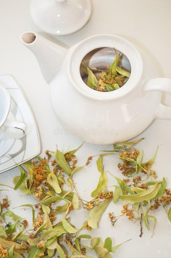 Tetera y taza con t? y flores del tilo foto de archivo libre de regalías