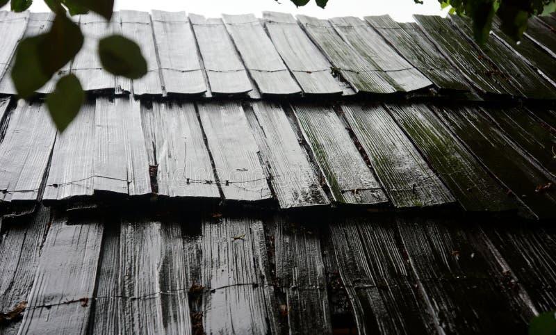 Teto de madeira preto molhado imagem de stock royalty free