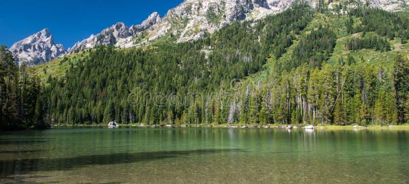 Teton grand photos stock