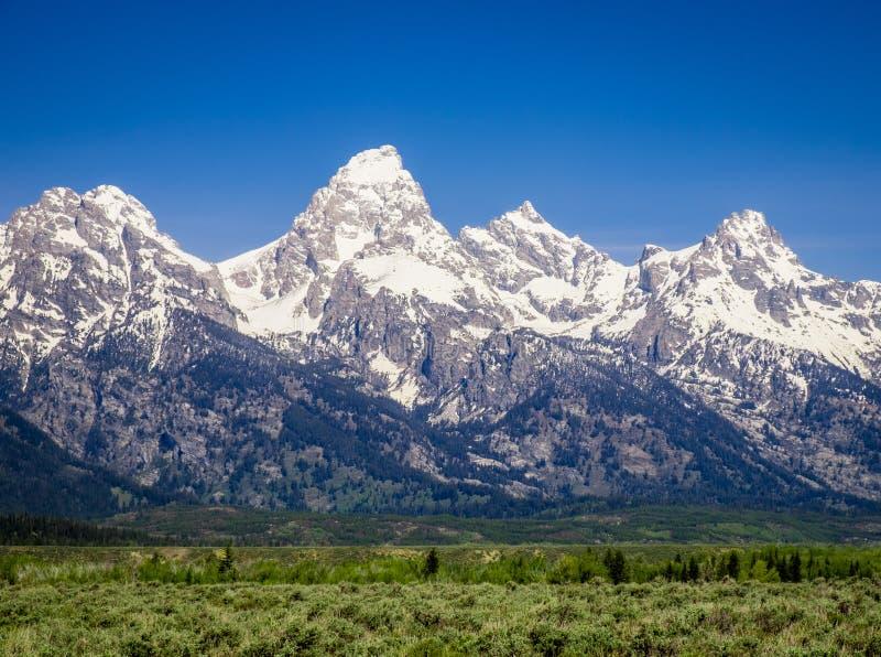 Teton grand - bâti Teton images libres de droits