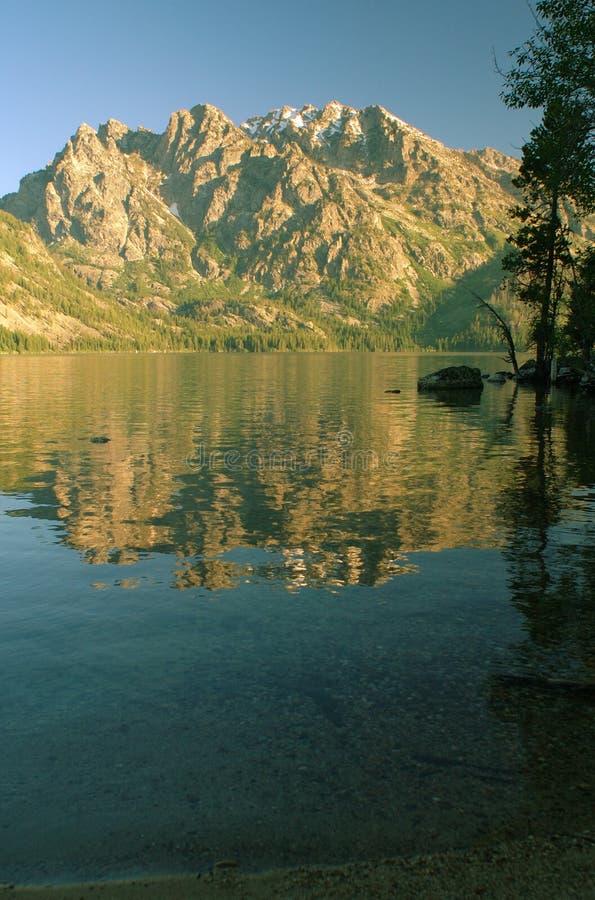 Teton grande e lago jenny fotos de stock