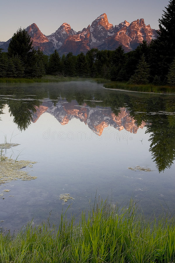 Teton reflection 2 royalty free stock photography