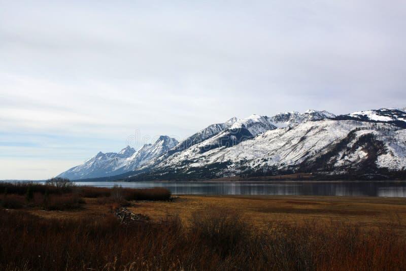 Tetonbergketen in Jackson Wyoming stock foto's