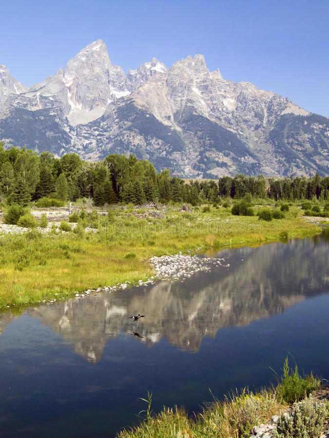 Download Tetons And Duck Reflected At Schwabachers Landing Stock Image - Image: 14713741